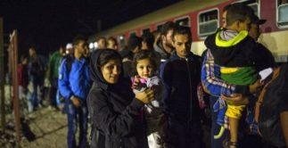 inmigrantestren-560x288 (1)